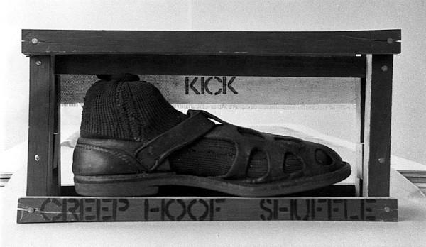 shoebox raw